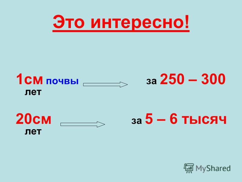 Это интересно! 1 см почвы за 250 – 300 лет 20 см за 5 – 6 тысяч лет