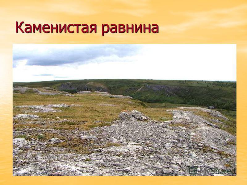 Каменистая равнина