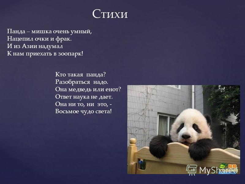 Панда – мишка очень умный, Нацепил очки и фрак. И из Азии надумал К нам приехать в зоопарк! Стихи Кто такая панда? Разобраться надо. Она медведь или енот? Ответ наука не дает. Она ни то, ни это, - Восьмое чудо света!