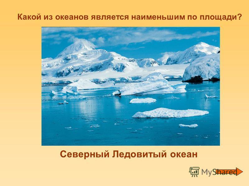 Какой из океанов является наименьшим по площади? Северный Ледовитый океан