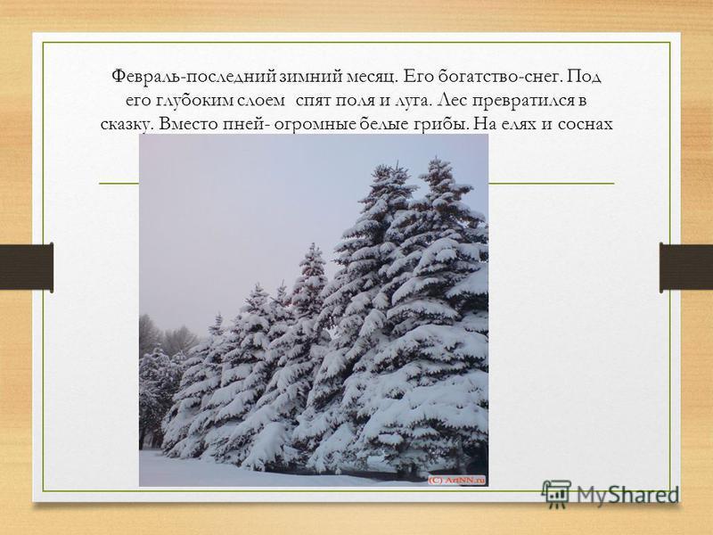 Февраль-последний зимний месяц. Его богатство-снег. Под его глубоким слоем спят поля и луга. Лес превратился в сказку. Вместо пней- огромные белые грибы. На елях и соснах белые шапки.