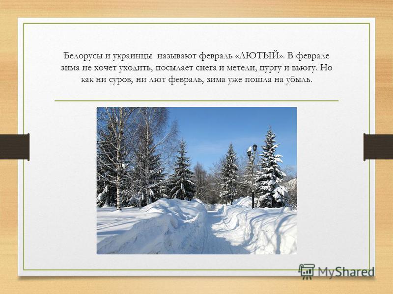 Белорусы и украинцы называют февраль «ЛЮТЫЙ». В феврале зима не хочет уходить, посылает снега и метели, пургу и вьюгу. Но как ни суров, ни лют февраль, зима уже пошла на убыль.