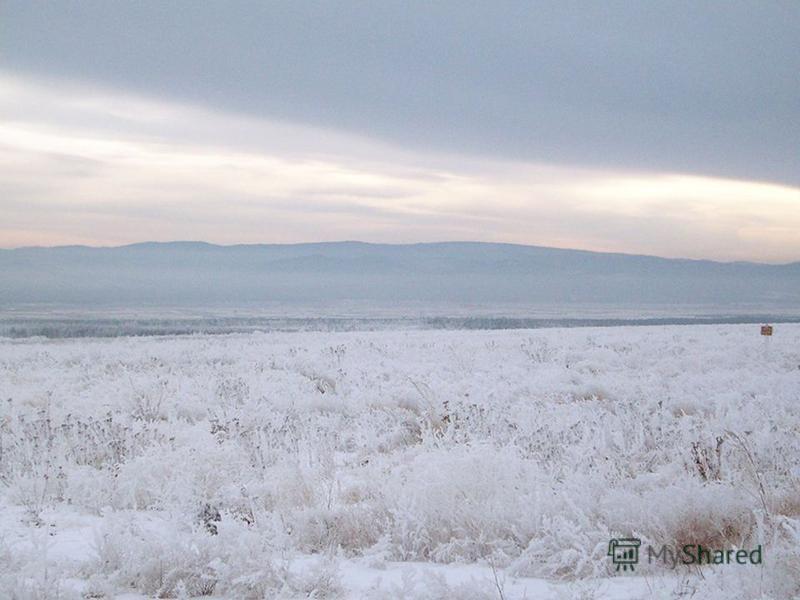 Климат в степи зимой. Зима в степных регионах всегда малоснежная, с сильными позёмками и метелями, иногда возможны даже морозы до 40 °C.