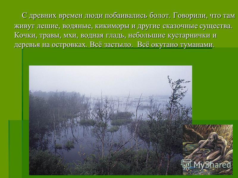 С древних времен люди побаивались болот. Говорили, что там живут лешие, водяные, кикиморы и другие сказочные существа. Кочки, травы, мхи, водная гладь, небольшие кустарнички и деревья на островках. Всё застыло. Всё окутано туманами. С древних времен