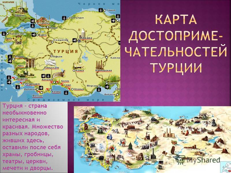 Единственным государственным языком в Турции является относящийся к тюркской группе турецкий язык.