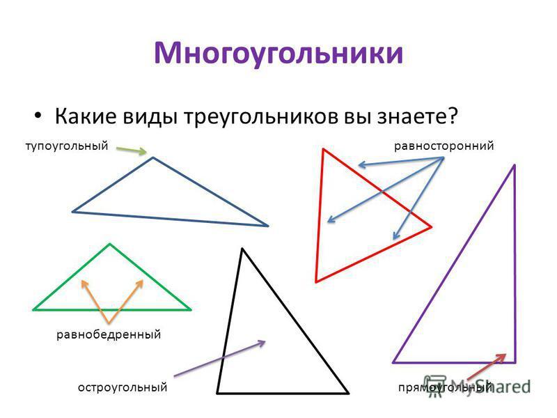 Многоугольники Какие виды треугольников вы знаете? прямоугольный равносторонний тупоугольный равнобедренный остроугольный