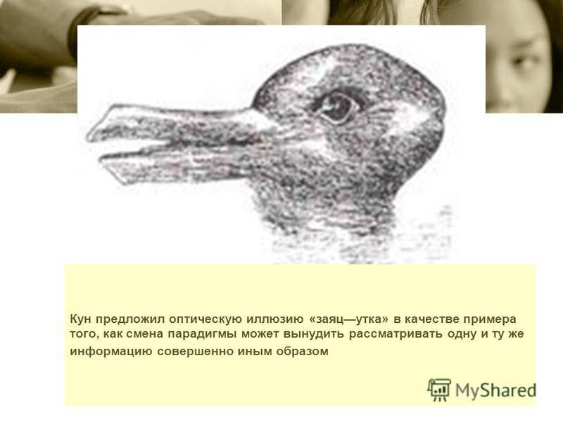 Кун предложил оптическую иллюзию «заяц утка» в качестве примера того, как смена парадигмы может вынудить рассматривать одну и ту же информацию совершенно иным образом