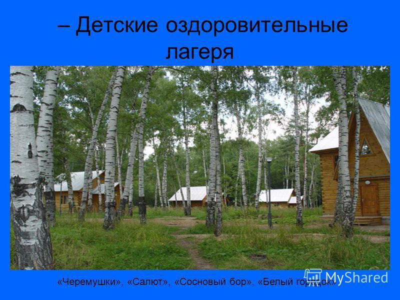 – Детские оздоровительные лагеря «Черемушки», «Салют», «Сосновый бор», «Белый городок»