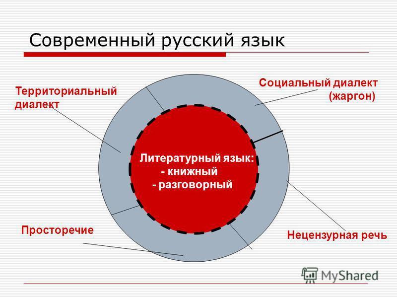 Современный русский язык Литературный язык: - книжный - разговорный Территориальный диалект Социальный диалект (жаргон) Просторечие Нецензурная речь