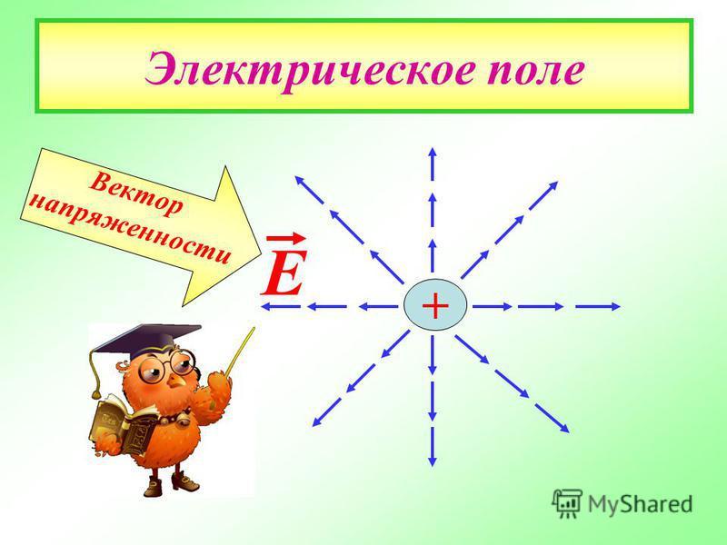 Электрическое поле + Е Вектор напряженности
