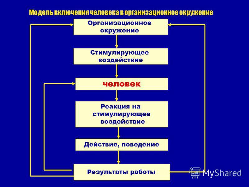 Модель включения человека в организационное окружение Организационное окружение человек Реакция на стимулирующее воздействие Действие, поведение Результаты работы Стимулирующее воздействие