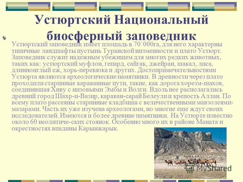 Устюртский Национальный биосферный заповедник Устюртский заповедник имеет площадь в 70`000 га, для него характерны типичные ландшафты пустынь Туранской низменности и плато Устюрт. Заповедник служит надежным убежищем для многих редких животных, таких