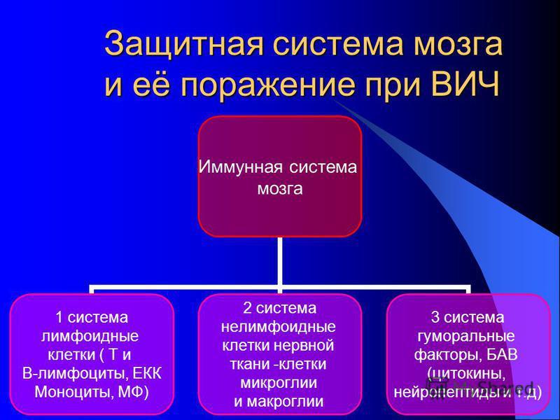 Защитная система мозга и её поражение при ВИЧ Иммунная система мозга 1 система лимфоидные клетки ( Т и В-лимфоциты, ЕКК Моноциты, МФ) 2 система нелимфоидные клетки нервной ткани -клетки микроглии и макроглии 3 система гуморальные факторы, БАВ (цитоки