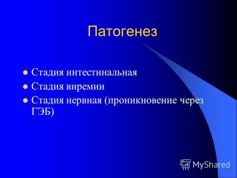 Патогенез Стадия интестинальная Стадия виремии Стадия нервная (проникновение через ГЭБ)