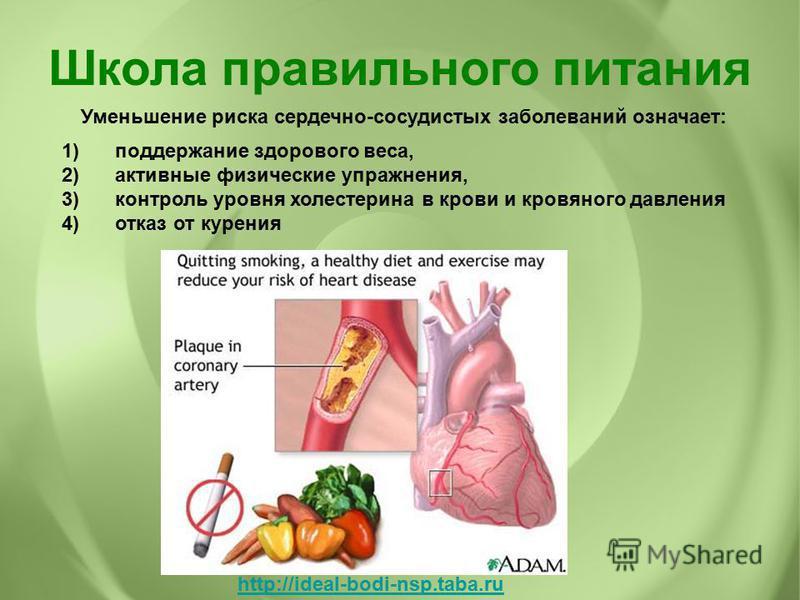 Уменьшение риска сердечно-сосудистых заболеваний означает: 1)поддержание здорового веса, 2)активные физические упражнения, 3)контроль уровня холестерина в крови и кровяного давления 4)отказ от курения Школа правильного питания http://ideal-bodi-nsp.t