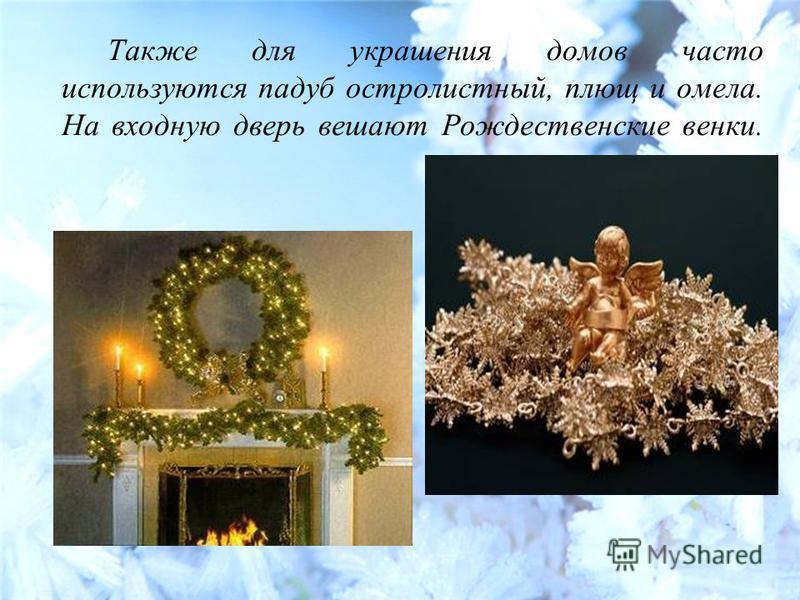Также для украшения домов часто используются падуб остролистный, плющ и омела. На входную дверь вешают Рождественские венки.
