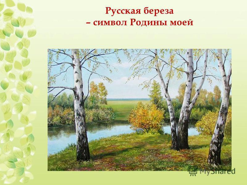 Русская береза – символ Родины моей