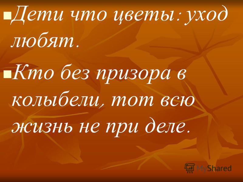 Дети что цветы : уход любят. Кто без призора в колыбели, тот всю жизнь не при деле.