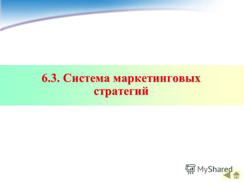 6.3. Система маркетинговых стратегий