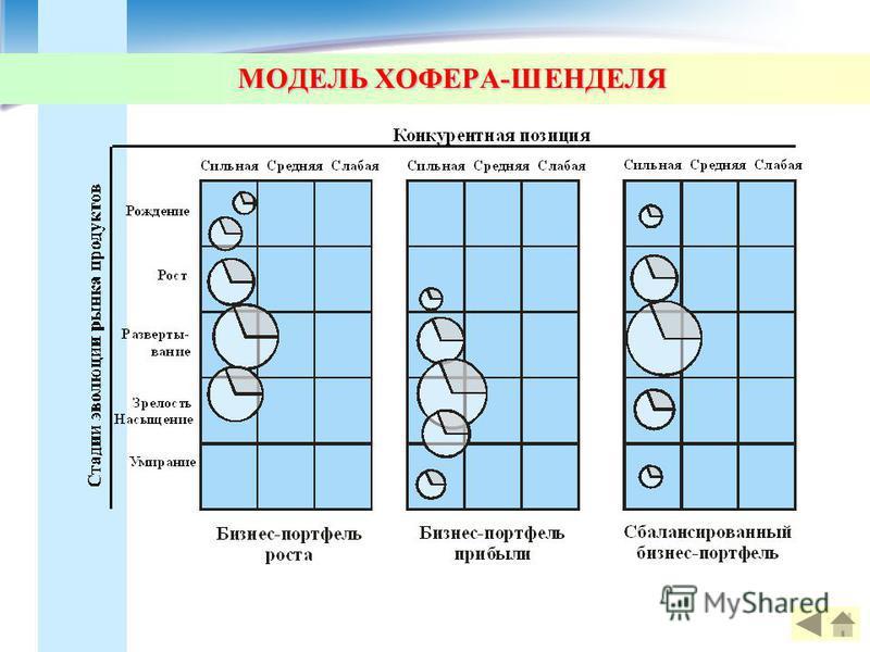 МОДЕЛЬ ХОФЕРА-ШЕНДЕЛЯ