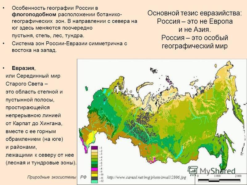 Основной тезис евразийства: Россия – это не Европа и не Азия. Россия – это особый географический мир Особенность географии России в флогоподобном расположении ботанико- географических зон. В направлении с севера на юг здесь меняются поочередно пустын