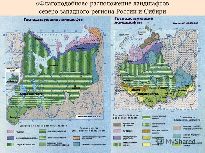 «Флагоподобное» расположение ландшафтов северо-западного региона России и Сибири