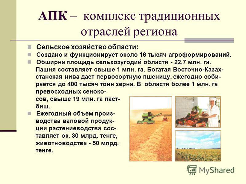 АПК – комплекс традиционных отраслей региона Сельское хозяйство области: Создано и функционирует около 16 тысяч агроформирований. Обширна площадь сельхозугодий области - 22,7 млн. га. Пашня составляет свыше 1 млн. га. Богатая Восточно-Казах- станская