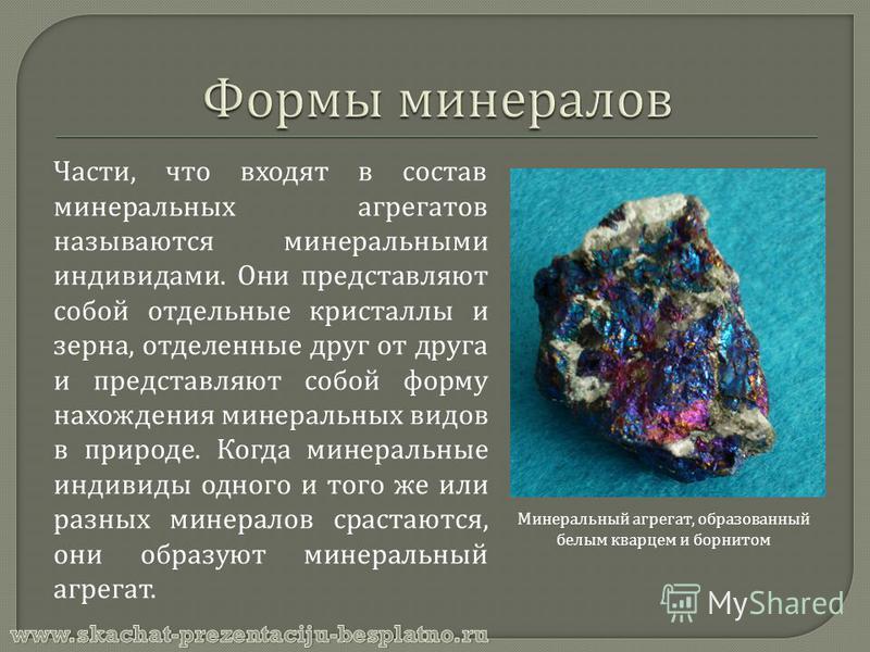 Части, что входят в состав минеральных агрегатов называются минеральными индивидами. Они представляют собой отдельные кристаллы и зерна, отделенные друг от друга и представляют собой форму нахождения минеральных видов в природе. Когда минеральные инд