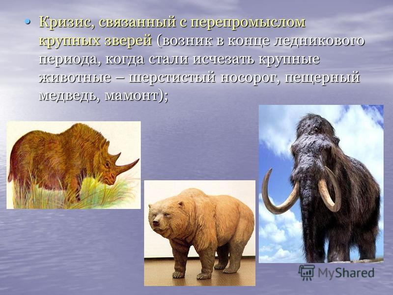 Кризис, связанный с перепромыслом крупных зверей (возник в конце ледникового периода, когда стали исчезать крупные животные – шерстистый носорог, пещерный медведь, мамонт); Кризис, связанный с перепромыслом крупных зверей (возник в конце ледникового