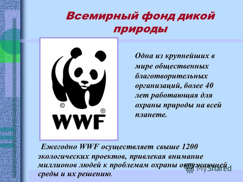 Ежегодно WWF осуществляет свыше 1200 экологических проектов, привлекая внимание миллионов людей к проблемам охраны окружающей среды и их решению. Одна из крупнейших в мире общественных благотворительных организаций, более 40 лет работающая для охраны