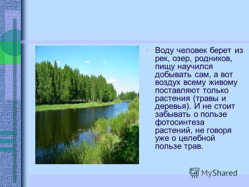 Воду человек берет из рек, озер, родников, пищу научился добывать сам, а вот воздух всему живому поставляют только растения (травы и деревья). И не стоит забывать о пользе фотосинтеза растений, не говоря уже о целебной пользе трав.