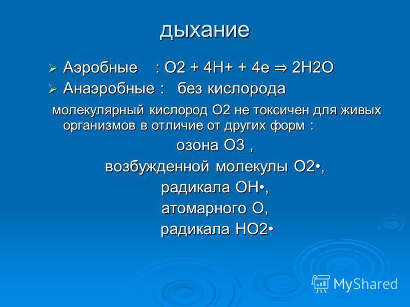 дыхание Аэробные : О2 + 4Н+ + 4 е 2Н2О Аэробные : О2 + 4Н+ + 4 е 2Н2О Анаэробные : без кислорода Анаэробные : без кислорода молекулярный кислород О2 не токсичен для живых организмов в отличие от других форм : молекулярный кислород О2 не токсичен для