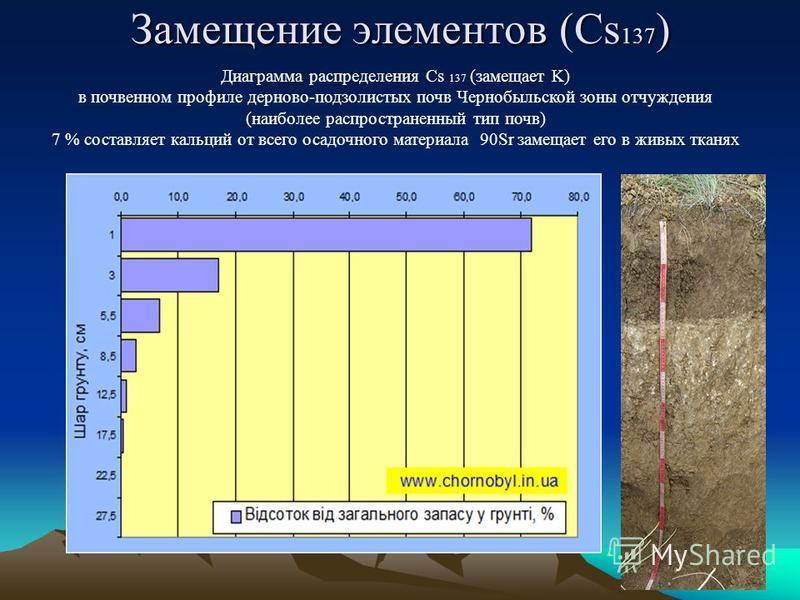 Диаграмма распределения Cs 137 (замещает K) в почвенном профиле дерново-подзолистых почв Чернобыльской зоны отчуждения (наиболее распространенный тип почв) 7 % составляет кальций от всего осадочного материала 90Sr замещает его в живых тканях Замещени