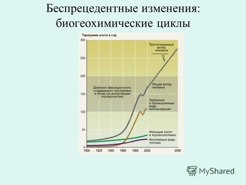 Беспрецедентные изменения: биогеохимические циклы