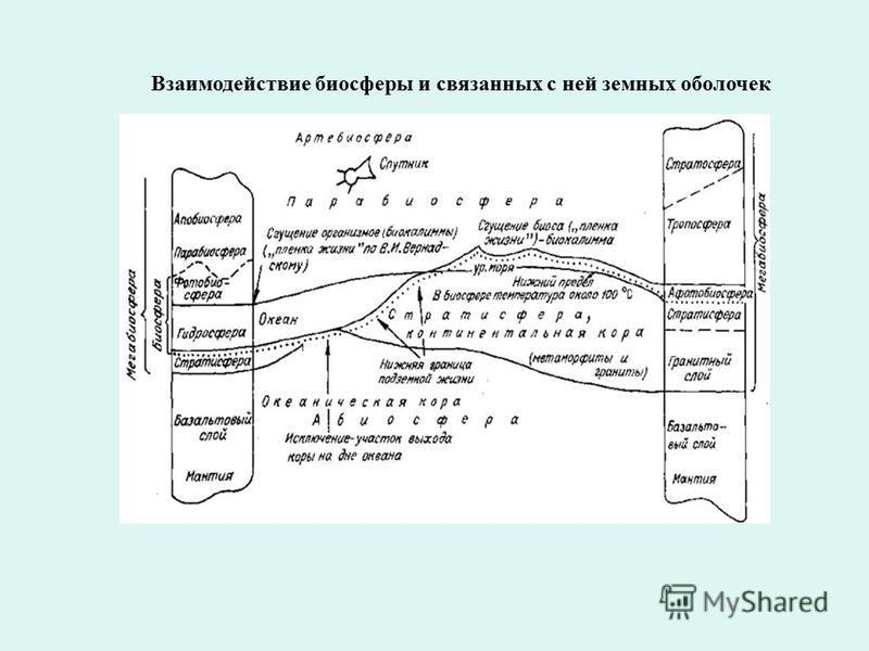 Взаимодействие биосферы и связанных с ней земных оболочек