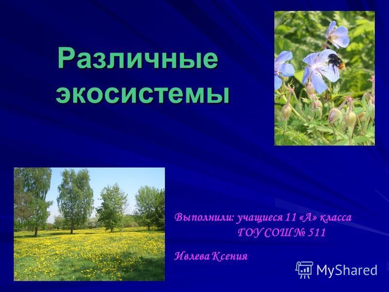 Различные экосистемы Выполнили: учащиеся 11 «А» класса ГОУ СОШ 511 Ивлева Ксения