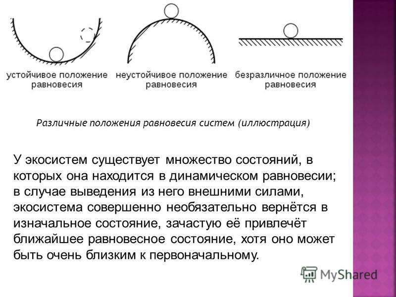 У экосистем существует множество состояний, в которых она находится в динамическом равновесии; в случае выведения из него внешними силами, экосистема совершенно необязательно вернётся в изначальное состояние, зачастую её привлечёт ближайшее равновесн