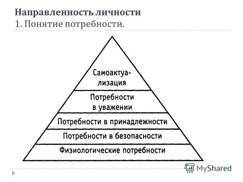 Направленность личности 1. Понятие потребности.