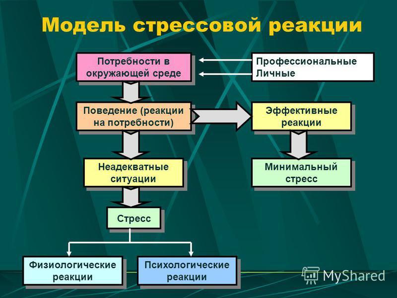 Модель стрессовой реакции Потребности в окружающей среде Поведение (реакции на потребности) Неадекватные ситуации Стресс Физиологические реакции Психологические реакции Эффективные реакции Минимальный стресс Профессиональные Личные