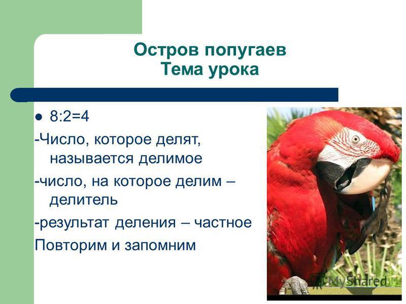 Остров попугаев Тема урока 8:2=4 -Число, которое делят, называется делимое -число, на которое делим – делитель -результат деления – частное Повторим и запомним