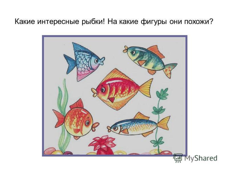 Какие интересные рыбки! На какие фигуры они похожи?