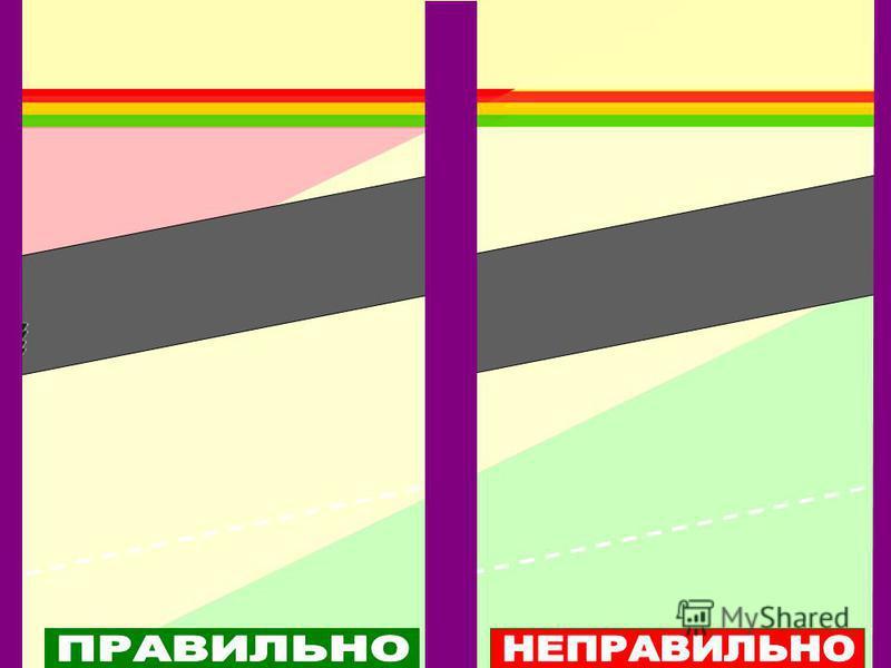Основные правила безопасности: Соблюдаем правила дорожного движения