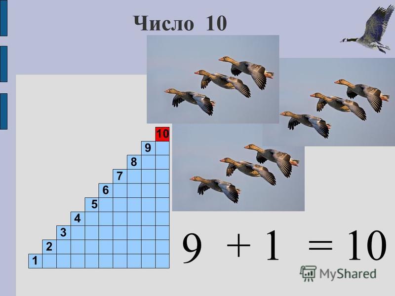 Число 10 9 1 2 3 4 5 6 7 8 9 10 + 1= 10