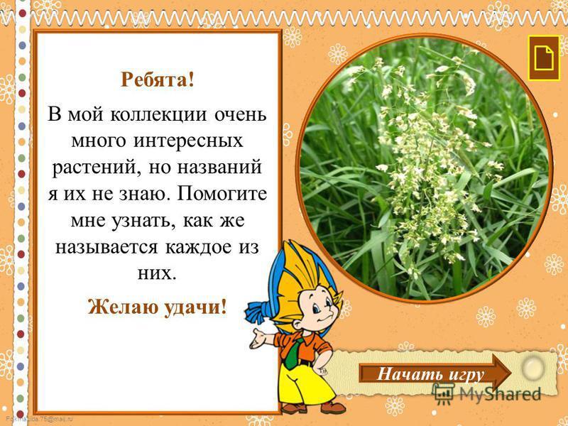 FokinaLida.75@mail.ru Ребята! В мой коллекции очень много интересных растений, но названий я их не знаю. Помогите мне узнать, как же называется каждое из них. Желаю удачи! Начать игру