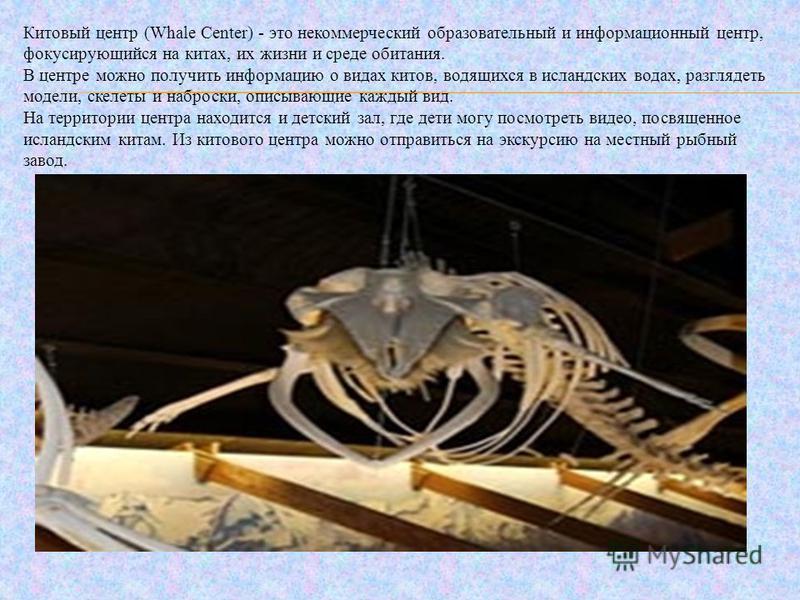 Китовый центр (Whale Center) - это некоммерческий образовательный и информационный центр, фокусирующийся на китах, их жизни и среде обитания. В центре можно получить информацию о видах китов, водящихся в исландских водах, разглядеть модели, скелеты и