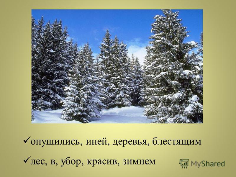 Азбука – к мудрость и ступенька. Своя земля и в горсти мила. Делу время, потех е час. Трус своей тени боится. (Д.п.,3 скл.) (П.п.,3 скл.) (Д.п.,1 скл.) (Р.п.,3 скл.)