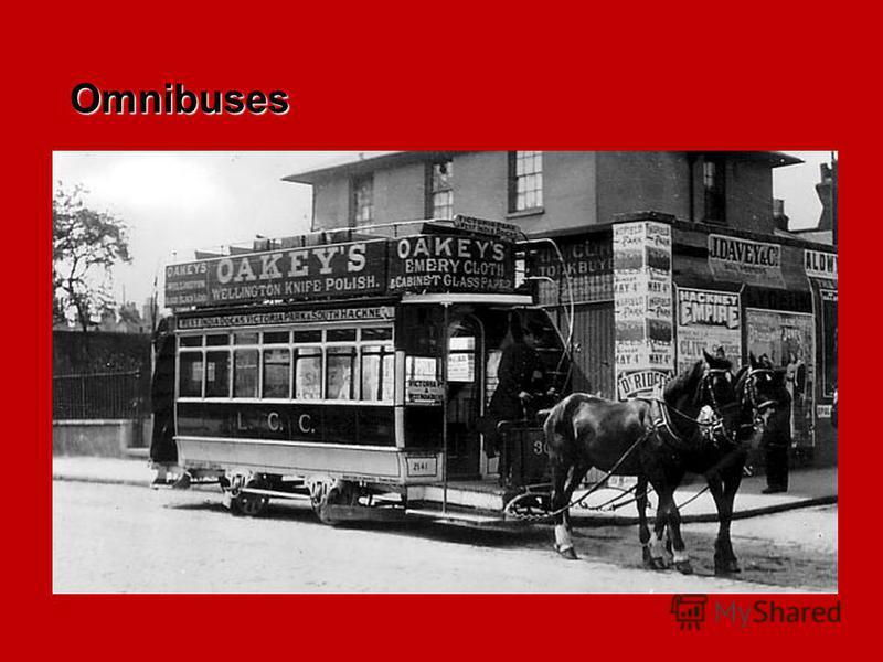 Omnibuses