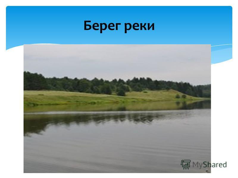 Берег реки