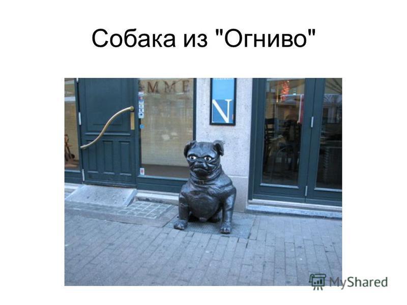 Собака из Огниво