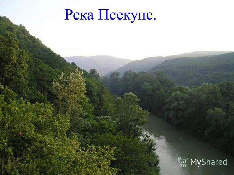 Река Псекупс.